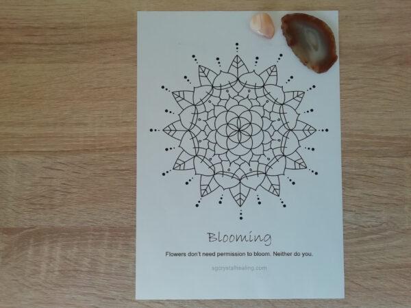 Oracle Mandala Coloring Page Blooming